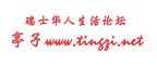 Tingzi Logo